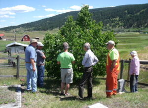 Tree pruning workshop.JPG
